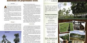 SISTEMAS SILVIPASTORIS COM CEDRO AUSTRALIANO EM PROPRIEDADES RURAIS