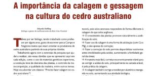 A IMPORTÂNCIA DA CALAGEM E GESSAGEM NA CULTURA DO CEDRO AUSTRALIANO