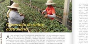 Revista Madeira Set 2015